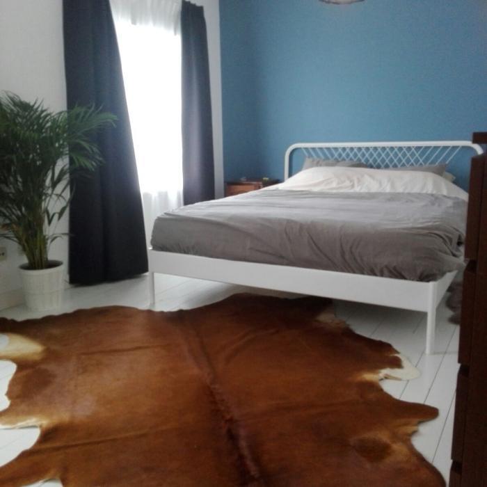 Renovatie oud behang verwijderen schilderen verf en advies